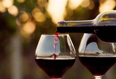 Entenda qual é o melhor vinho para combinar com cada prato